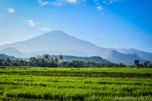 fotografi indonesia