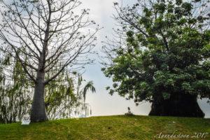 Taman Waduk Ria Rio