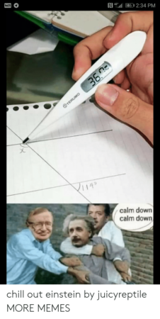 Einstein Calm Down
