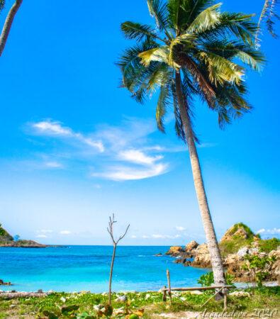 Pantai Tapak Kera