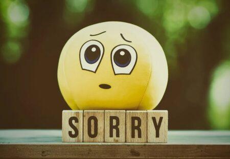 Saya Minta Maaf